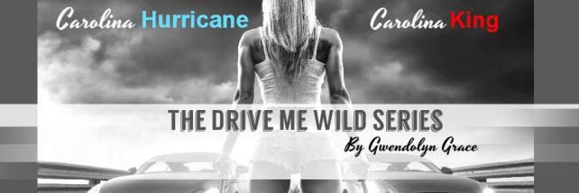 Drive Me Wild Book Banner