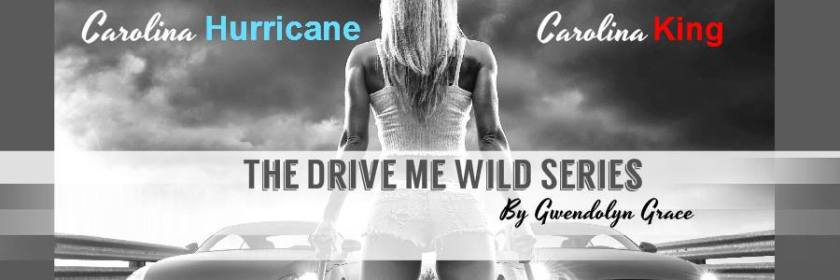 Drive Me Wild Book Banner
