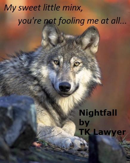 Nightfall wolf meme 1